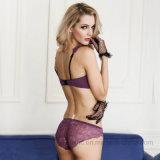 Сводка и бюстгальтер шнурка европейских новых повелительниц типа сексуальная