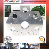 Лазер режа изготовление стального листа/изготовление металлического листа