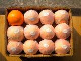 Jus de fruits pulpeux Orange de 250ml Buvez du jus