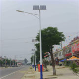 Qualité 3-5 Years Warranty 80W Solar Street Lamp