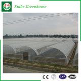 농업 상업적인 플라스틱 온실
