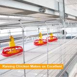 Entwurf galvanisierte Batterie-Schicht-Huhn-Rahmen für Geflügelfarm
