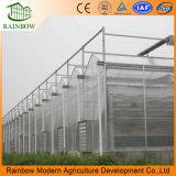 De Aluminio de la Venta Caliente Fácil Instalación Invernadero de Policarbonato de Calidad Superior de la Planta