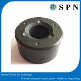 BLDCモーターのためのパフォーマンス亜鉄酸塩の磁石のリング