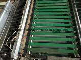 Vorbildlicher angebrachter Reißverschluss-Beutel des Plastikfilm-700, der Maschine herstellt