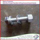 Plaque de zinc de la pente 8.8 de boulon de tête Hex de tension élevée avec des rondelles de noix