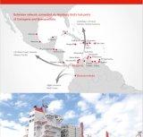 Service d'expédition de machine surdimensionnée en Amérique centrale et du Sud