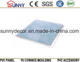 光沢のある印刷の大理石は壁Cielo Raso De PVCのためのPVC天井板PVCパネルを設計する
