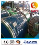 Bobina dell'acciaio inossidabile/striscia AISI 304 acciaio inossidabile del rullo