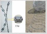 Rete fissa a fisarmonica del filo del rasoio dell'involucro piano