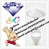 Glycylglycine CAS : 556-50-3, Gly-Gly