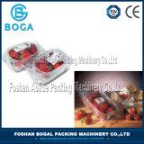 Máquina de embalagem automática do equipamento de empacotamento das frutas dos vegetais inoxidáveis cheios