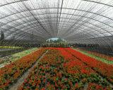 Tecidos agrícolas PP Tapete de controle de plantas daninhas a cobertura de solo Net
