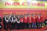 Audley Supplier 3.2m La mejor impresora de publicidad solvente ecológica