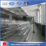 Egg Laying Chicken Cage para Nigeria Poultry Farm