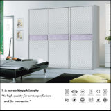 Изготовленный на заказ конструкция шкафа с раздвижной дверью (ZH5081)