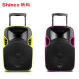 Haut-parleur de projecteur rechargeable chinois de 10 po avec poignée et roues