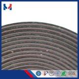 Anisotropes magnetisches Blatt verdrängte Streifen