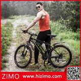 Prix électrique de bicyclette de montagne sèche