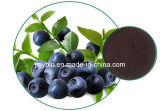 Antociano antiossidante naturale di 10:1 5%-30% dell'estratto del mirtillo