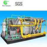 De hete Compressor van de Zuiger van het Gas van het Chloride van het Merk van China van de Verkoop Methyl