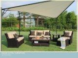 خارجيّة [رتّن] [ويكر] أريكة يثبت لأنّ خارجيّة فناء وفندق