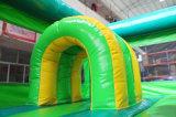 Castelo de salto do Bouncer 2017 inflável o mais atrasado com corrediça