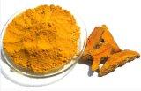 100% органический природных куркумы корневой извлечения 95% Curcumin