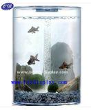 Mini-Galss taça de peixe para montagem em parede de acrílico Aquário (BTR-S2028)