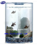 Mini Galss Fish Bowl Acrylic Wall Mount Fish Bowl (BTR-S2028)