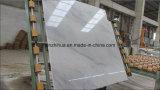 Vente chaude de Chine Carrare naturelle Carrelage en marbre blanc / dalle / comptoir