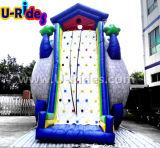 Deportes inflables de la dimensión de una variable del árbol que suben el juego de pared pegajoso de la escalada de la colina que sube para el acontecimiento