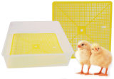 Het leven die de Kleine Uitbroedende Machine van het Gevogelte van 56 Eieren onderwijzen