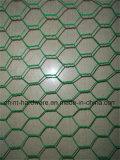 Malha de Arame Hexagonal com revestimento de PVC para Galinheiro Wire Mesh