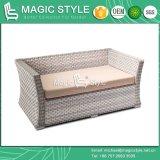 Sofà stabilito del rattan del nuovo sofà di vimini di disegno con l'ammortizzatore (stile magico)