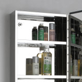 Het Kabinet van de Badkamers van het roestvrij staal met Lange Spiegel 7057 van de Make-up