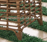 De moderne Rieten Eettafel en de Stoelen van de Tuin van de Rotan van het Meubilair van de Vrije tijd Openlucht (tg-1303)