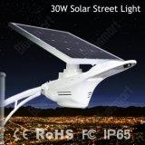 2016 indicatore luminoso di via solare del nuovo del Patten 30W indicatore luminoso solare innovatore del cigno