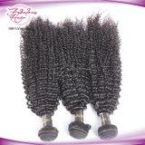 Cheveux humains de gentille de cheveu Vierge brésilienne crépue de Dyeable