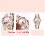 Agraciado de gama alta reloj automático de las mujeres con correa de acero inoxidable Fs604