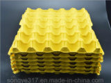 ペーパーパルプの皿30の卵
