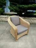 庭のテラスの枝編み細工品/セットされる藤のソファー-屋外の家具(LN-3029)