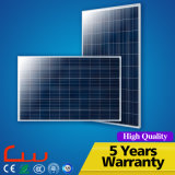 Panneau solaire polycristallin de la qualité 100W