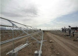 productos del panel solar polivinílico 155W/de la energía solar con el CE, CCC aprobado
