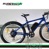 21 Geschwindigkeits-fetter Gummireifen-elektrisches Fahrrad