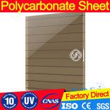 blad van het Polycarbonaat van de Muur van 10mm het Duidelijke Tweeling Holle
