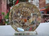 Изготовленный на заказ высокое прозрачное круглое акриловое пожалование с печатание 3D