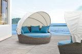 Daybed esterno romantico del rattan dei Loungers di Sun della mobilia