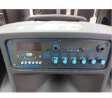 Haut-parleur portatif rechargeable extérieur de grand pouvoir de Feiyang/Temeisheng avec le chariot---SL12-01