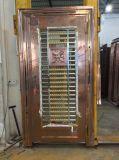 Farben-Edelstahl-Tür (S-3029)